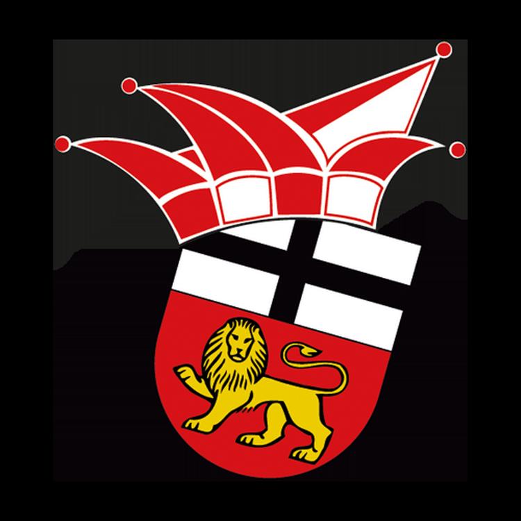 Das Wappen der Ehrengarde zeigt das Stadtwappen Bonns mit einer Karnevalsmütze.